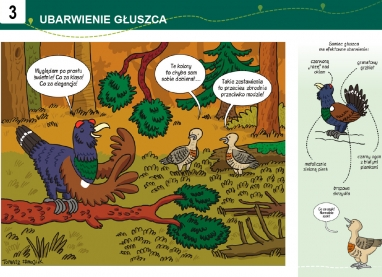 Barania-Gora-sciezka-2