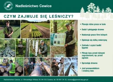 Cewice-1