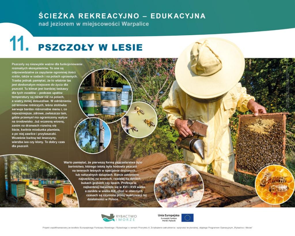 Tablica edukacyjna Pszczoły w lesie