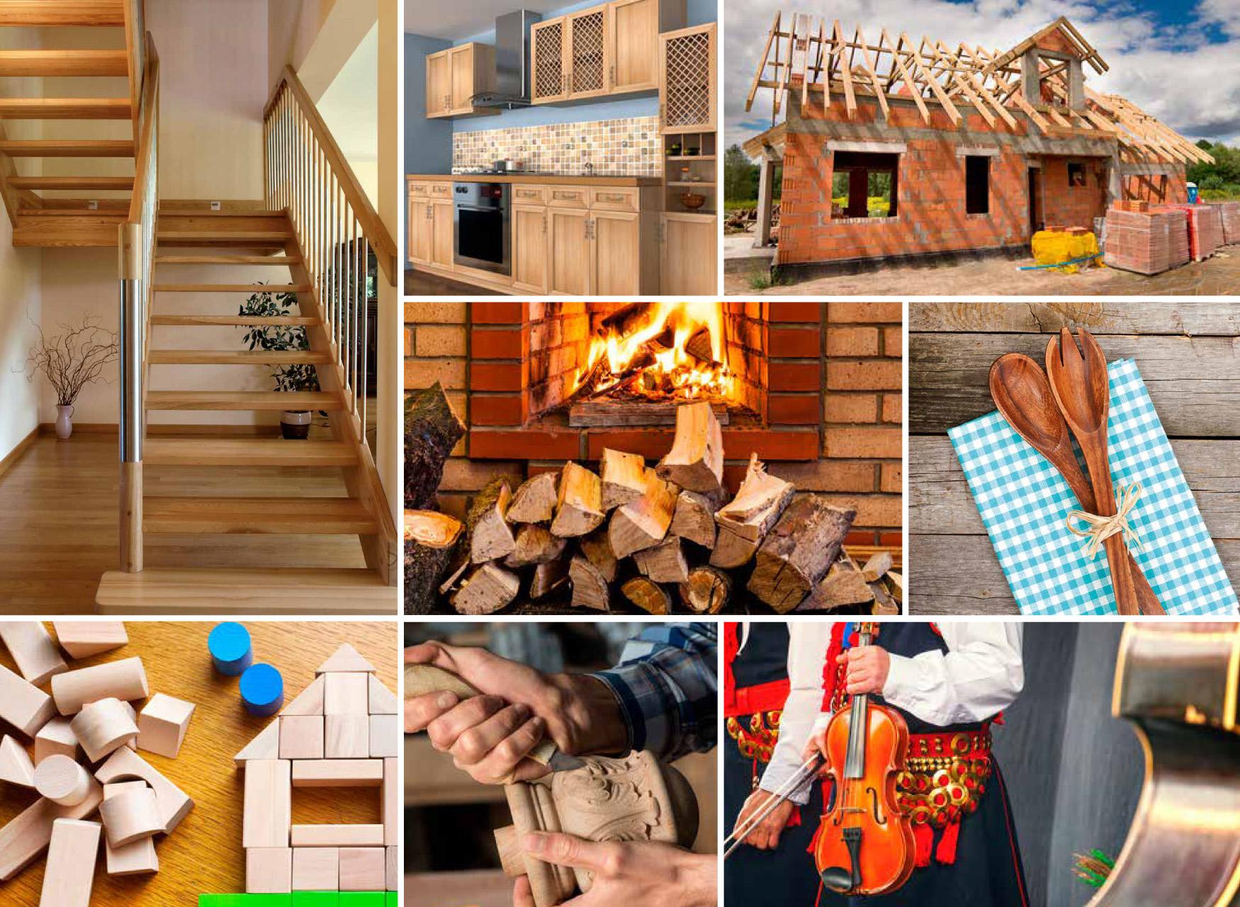Drewno - surowiec niezwykły